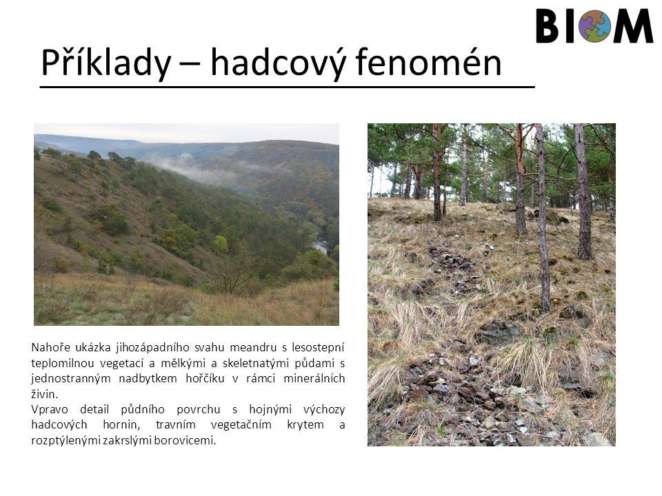 Příklady – hadcový fenomén Nahoře ukázka jihozápadního svahu meandru s lesostepní teplomilnou vegetací a mělkými a skeletnatými půdami s jednostranným