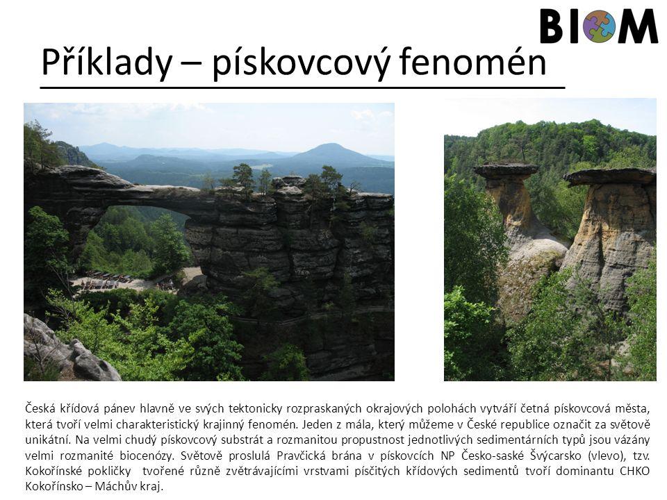 Příklady – pískovcový fenomén Česká křídová pánev hlavně ve svých tektonicky rozpraskaných okrajových polohách vytváří četná pískovcová města, která t