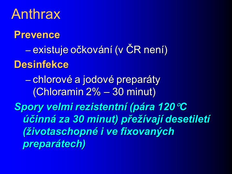 Anthrax Prevence – existuje očkování (v ČR není) Desinfekce – chlorové a jodové preparáty (Chloramin 2% – 30 minut) Spory velmi rezistentní (pára 120