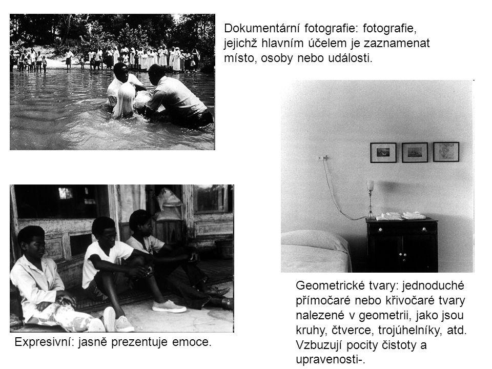 Dokumentární fotografie: fotografie, jejichž hlavním účelem je zaznamenat místo, osoby nebo události.