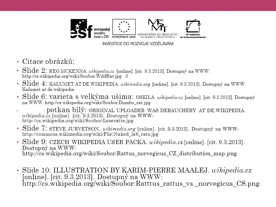 Citace obrázků: Slide 2: REG MCKENNA. wikipedia.cz [online]. [cit. 9.3.2013]. Dostupný na WWW: http://cs.wikipedia.org/wiki/Soubor:WildRat.jpg 3 Slide