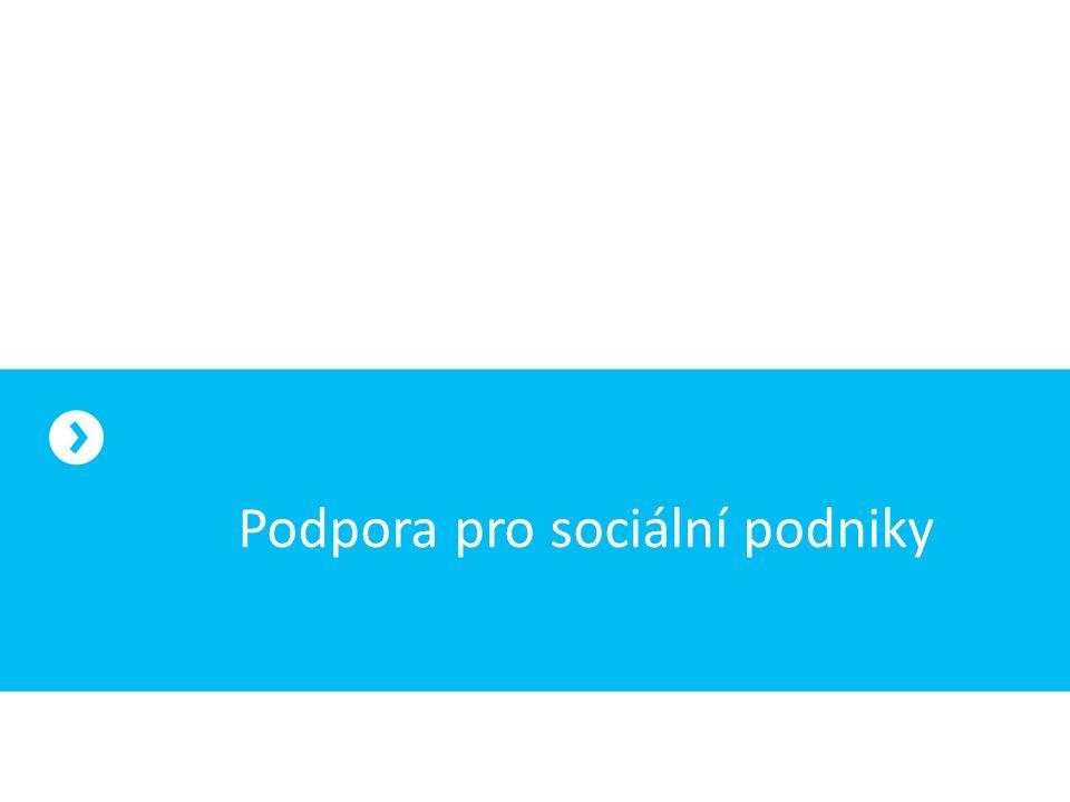 Podpora pro sociální podniky