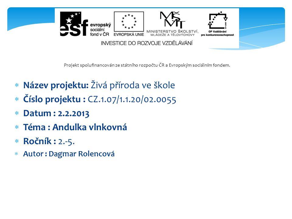  Název projektu: Živá příroda ve škole  Číslo projektu : CZ.1.07/1.1.20/02.0055  Datum : 2.2.2013  Téma : Andulka vlnkovná  Ročník : 2.-5.  Auto