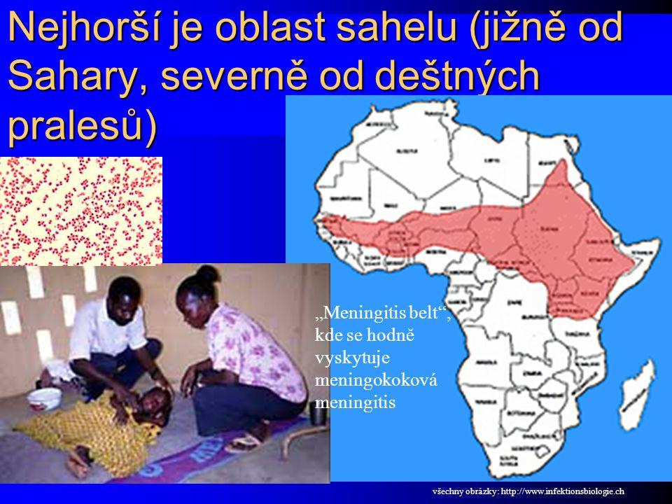 """Nejhorší je oblast sahelu (jižně od Sahary, severně od deštných pralesů) """"Meningitis belt , kde se hodně vyskytuje meningokoková meningitis všechny obrázky: http://www.infektionsbiologie.ch"""