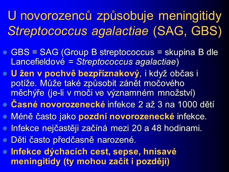 U novorozenců způsobuje meningitidy Streptococcus agalactiae (SAG, GBS) GBS = SAG (Group B streptococcus = skupina B dle Lancefieldové = Streptococcus agalactiae) GBS = SAG (Group B streptococcus = skupina B dle Lancefieldové = Streptococcus agalactiae) U žen v pochvě bezpříznakový, i když občas i potíže.