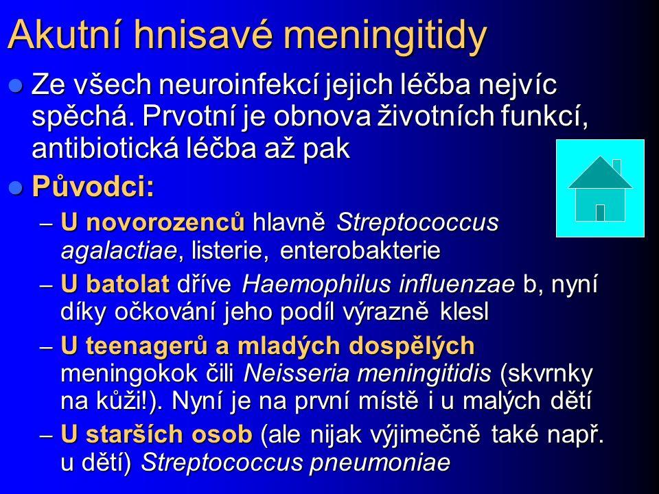 Akutní hnisavé meningitidy Ze všech neuroinfekcí jejich léčba nejvíc spěchá.