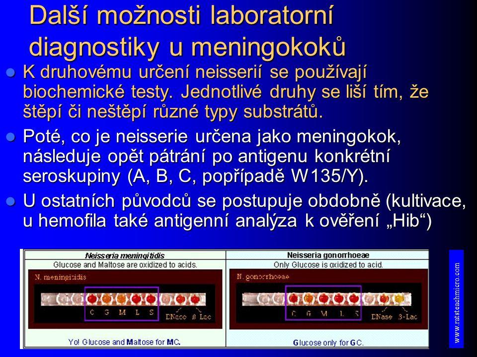 Další možnosti laboratorní diagnostiky u meningokoků K druhovému určení neisserií se používají biochemické testy.