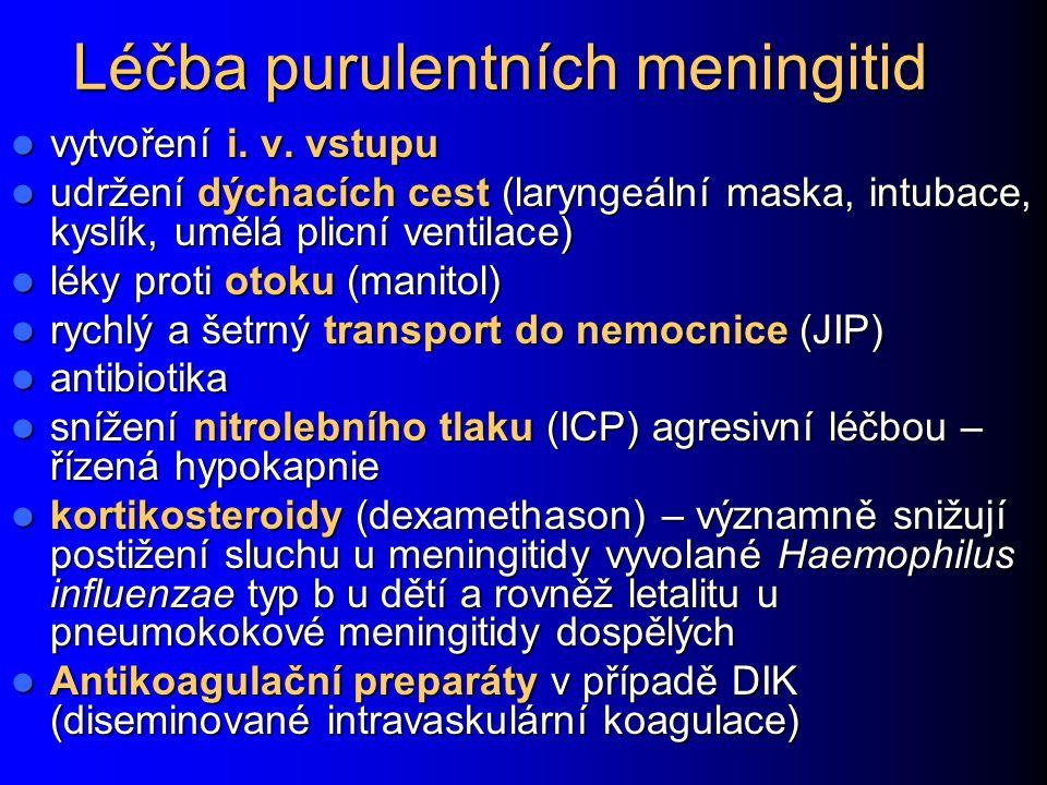 Léčba purulentních meningitid vytvoření i.v. vstupu vytvoření i.