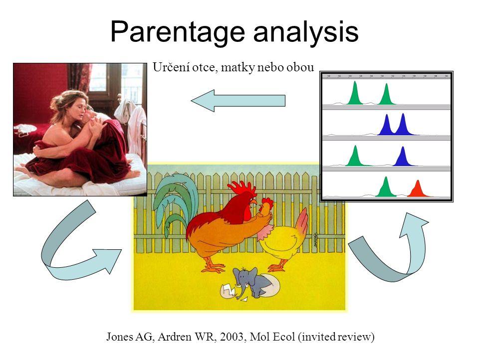 Parentage analysis Určení otce, matky nebo obou Jones AG, Ardren WR, 2003, Mol Ecol (invited review)