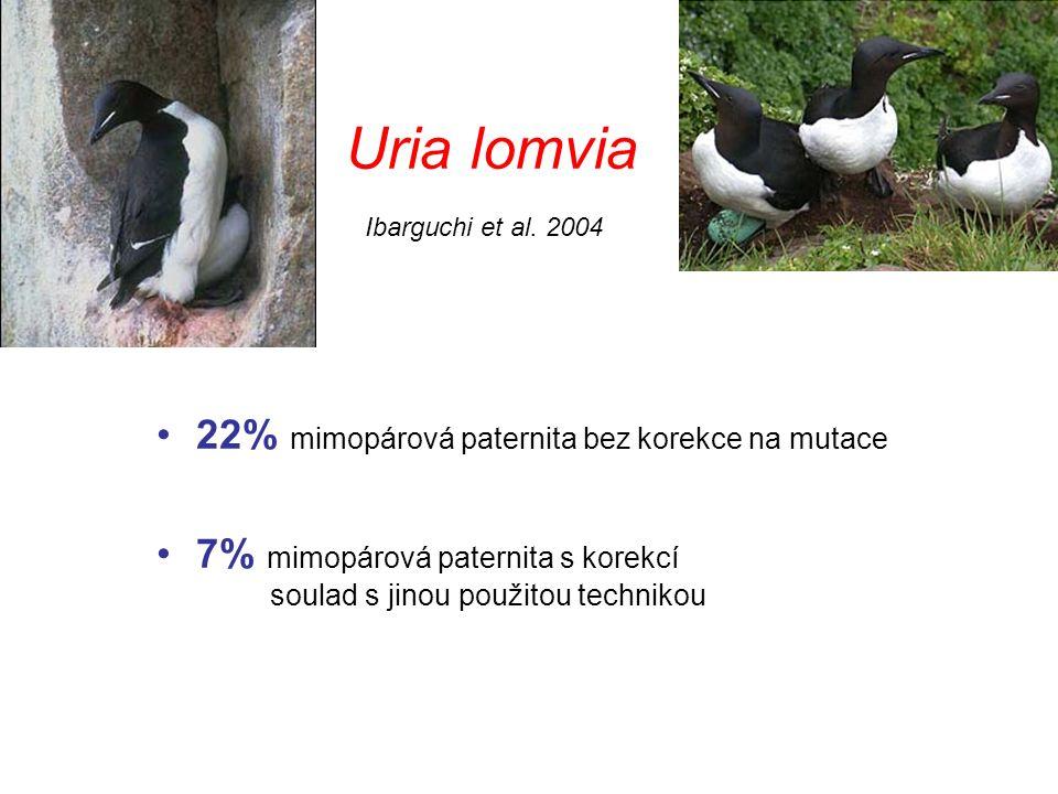 Uria lomvia 22% mimopárová paternita bez korekce na mutace 7% mimopárová paternita s korekcí soulad s jinou použitou technikou Ibarguchi et al.