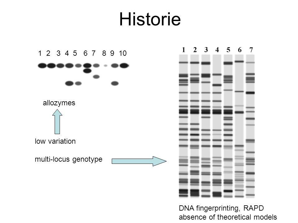 Využití mikrosatelitů (dnes nejčastěji používané markery pro stanovení paternity) Spojení teorie (statistické modely) a praxe (vysoce polymorfní single-locus markery) Tandemová opakování krátkých motivů Např.