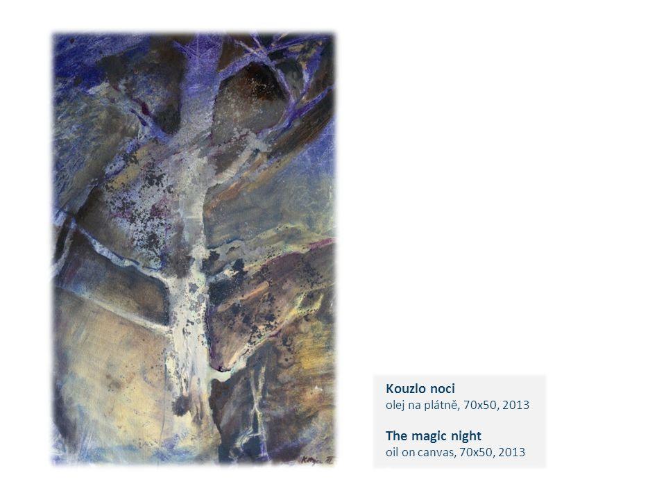 Kouzlo noci olej na plátně, 70x50, 2013 The magic night oil on canvas, 70x50, 2013 c