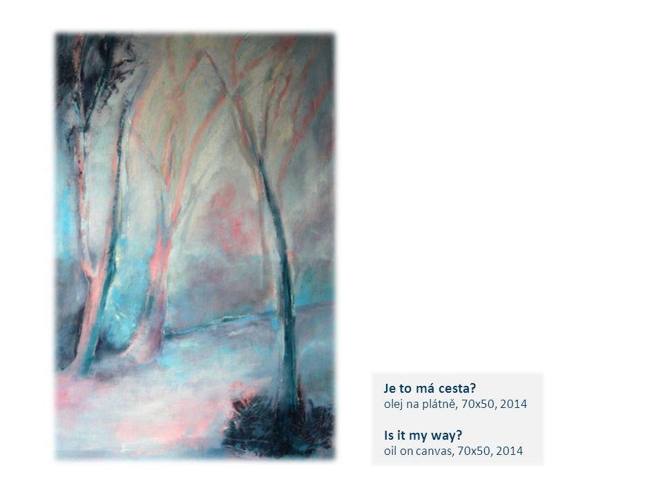 Je to má cesta? olej na plátně, 70x50, 2014 Is it my way? oil on canvas, 70x50, 2014 c