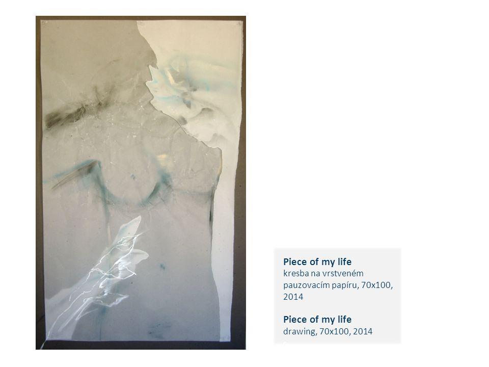 Piece of my life kresba na vrstveném pauzovacím papíru, 70x100, 2014 Piece of my life drawing, 70x100, 2014 c