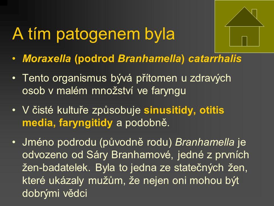 A tím patogenem byla Moraxella (podrod Branhamella) catarrhalis Tento organismus bývá přítomen u zdravých osob v malém množství ve faryngu V čisté kultuře způsobuje sinusitidy, otitis media, faryngitidy a podobně.