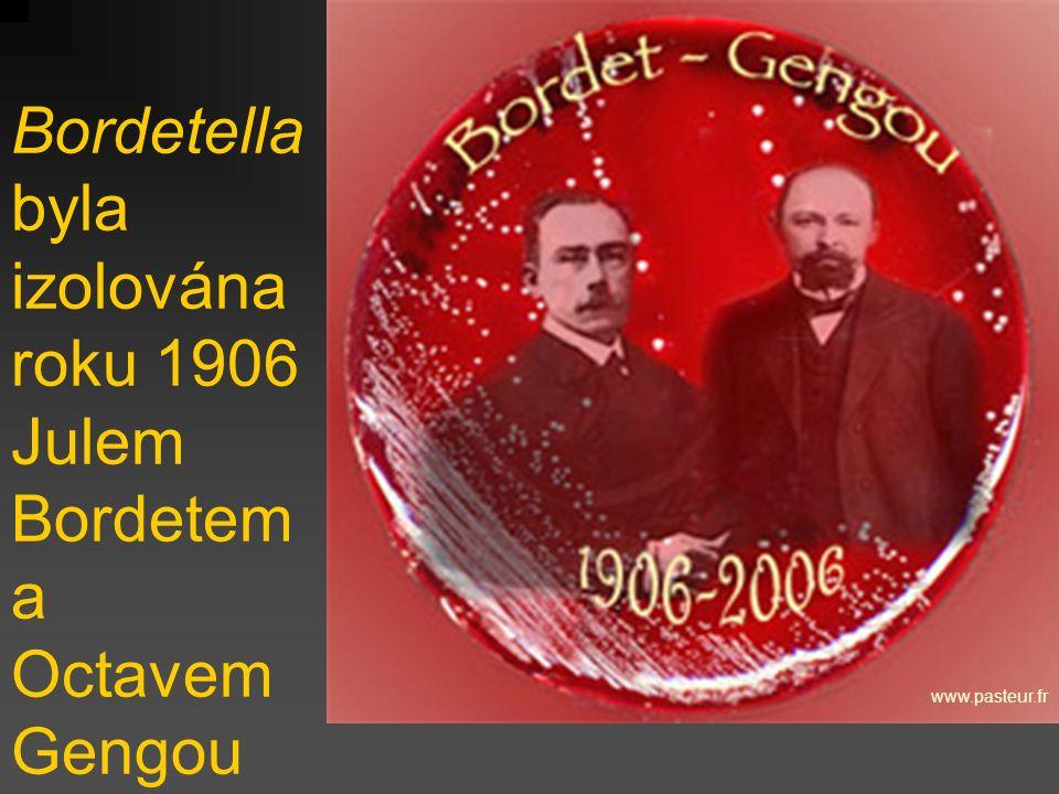 Bordetella byla izolována roku 1906 Julem Bordetem a Octavem Gengou www.pasteur.fr