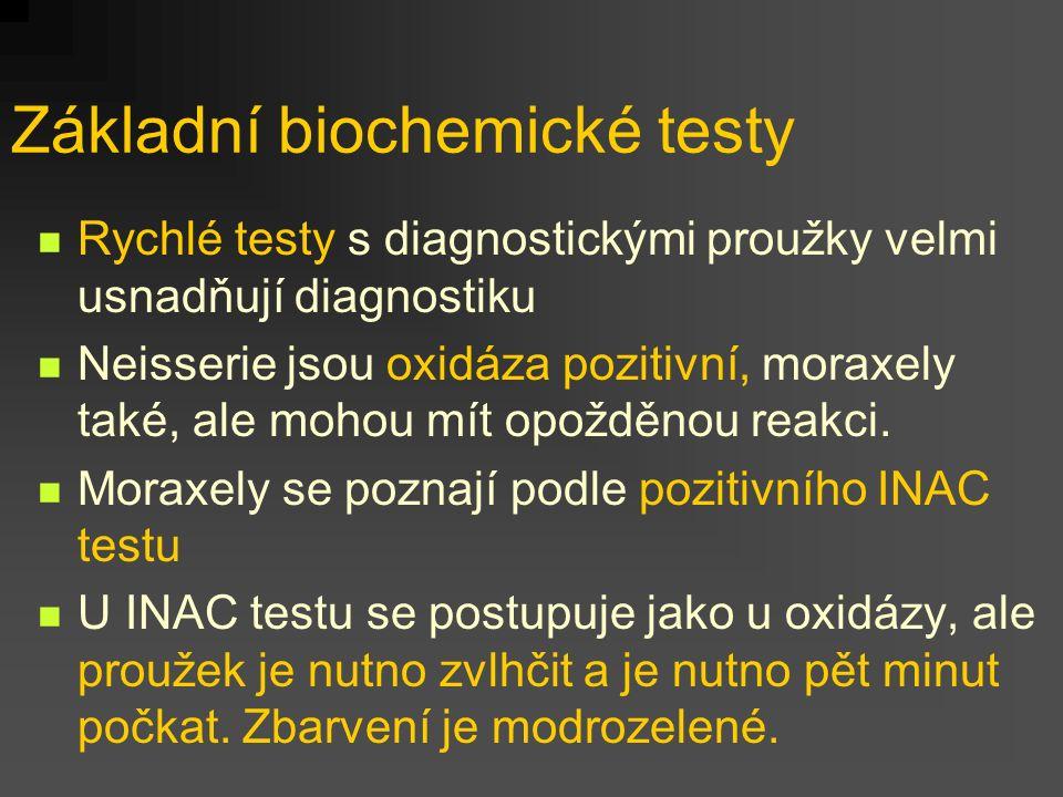 Základní biochemické testy Rychlé testy s diagnostickými proužky velmi usnadňují diagnostiku Neisserie jsou oxidáza pozitivní, moraxely také, ale moho