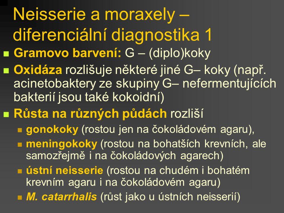 Neisserie a moraxely – diferenciální diagnostika 1 Gramovo barvení: G – (diplo)koky Oxidáza rozlišuje některé jiné G– koky (např.