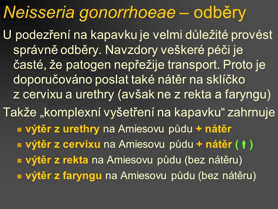 Neisseria gonorrhoeae – odběry U podezření na kapavku je velmi důležité provést správně odběry. Navzdory veškeré péči je časté, že patogen nepřežije t