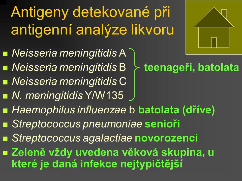 Antigeny detekované při antigenní analýze likvoru Neisseria meningitidis A Neisseria meningitidis B teenageři, batolata Neisseria meningitidis C N.