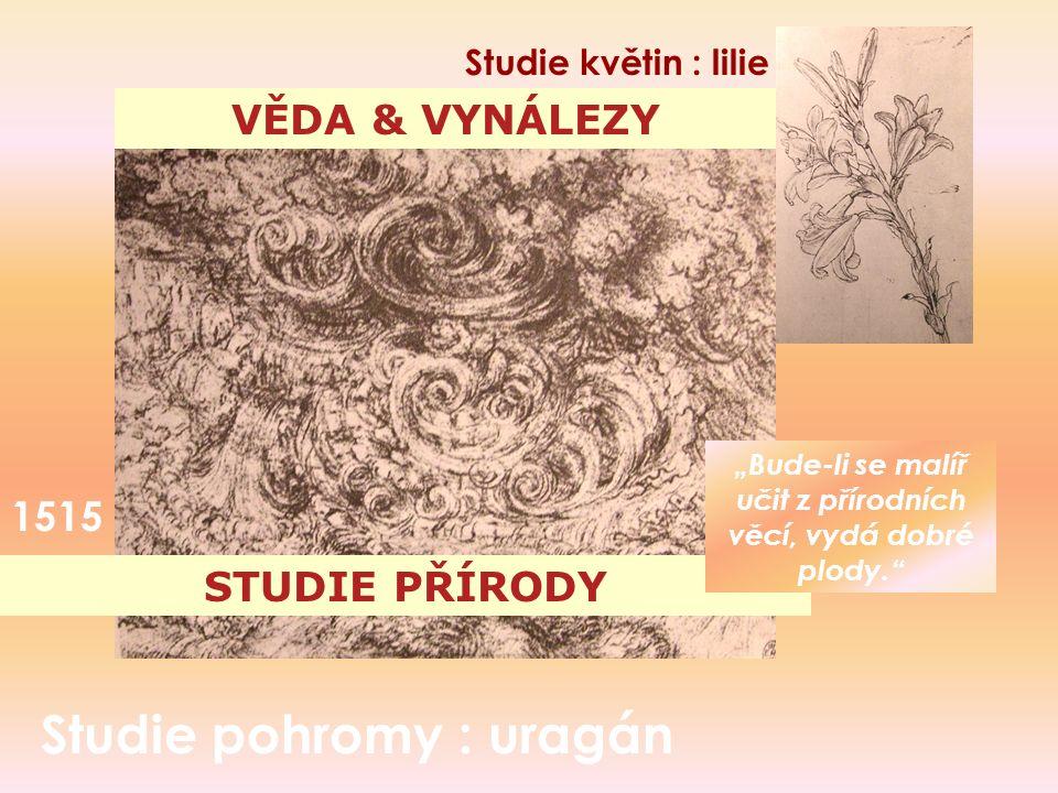 """STUDIE PŘÍRODY Studie pohromy : uragán VĚDA & VYNÁLEZY 1515 Studie květin : lilie """"Bude-li se malíř učit z přírodních věcí, vydá dobré plody."""