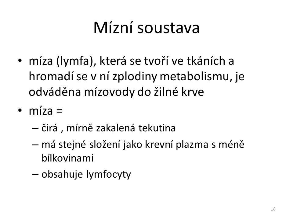 Mízní soustava míza (lymfa), která se tvoří ve tkáních a hromadí se v ní zplodiny metabolismu, je odváděna mízovody do žilné krve míza = – čirá, mírně