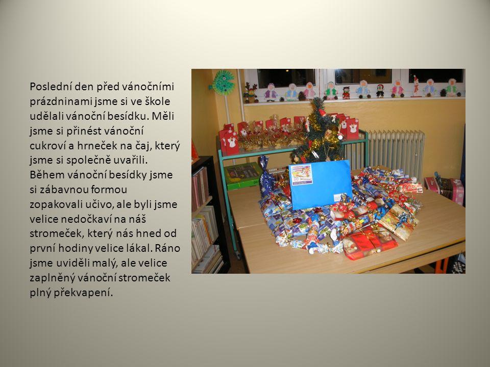 Poslední den před vánočními prázdninami jsme si ve škole udělali vánoční besídku. Měli jsme si přinést vánoční cukroví a hrneček na čaj, který jsme si