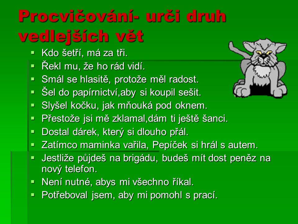 Nahraď vyznačené větné členy vedlejší větou  Složil letadlo PODLE NÁVODU.