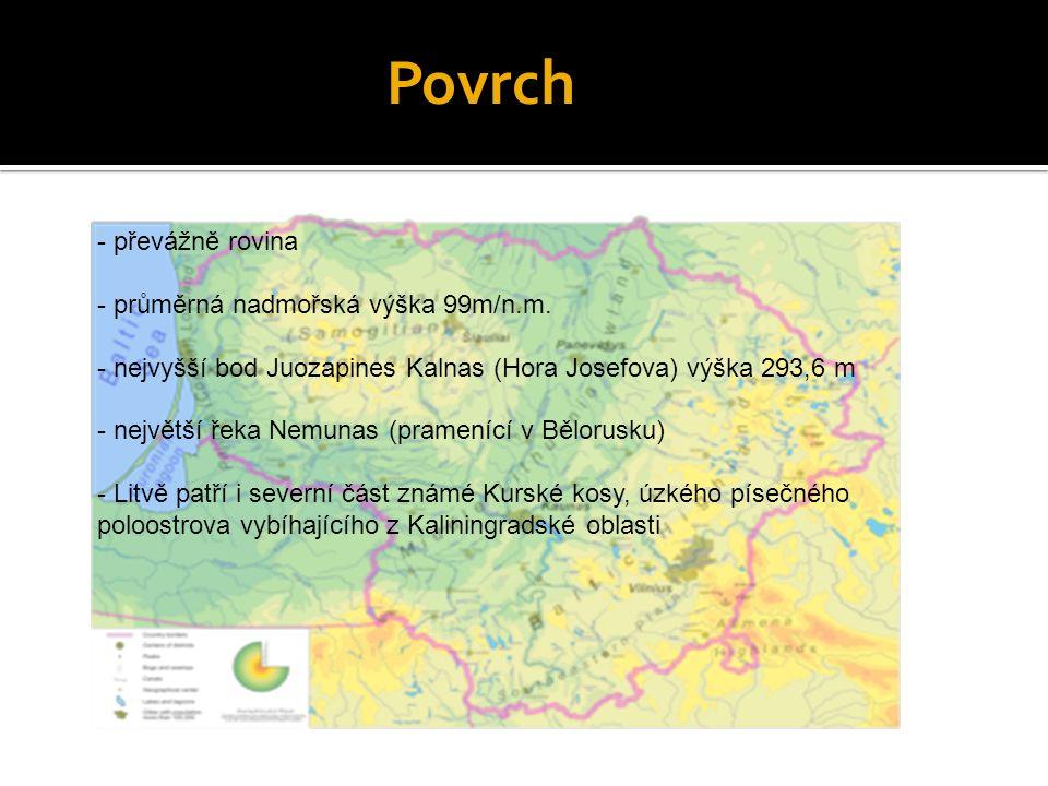 - převážně rovina - průměrná nadmořská výška 99m/n.m. - nejvyšší bod Juozapines Kalnas (Hora Josefova) výška 293,6 m - největší řeka Nemunas (prameníc
