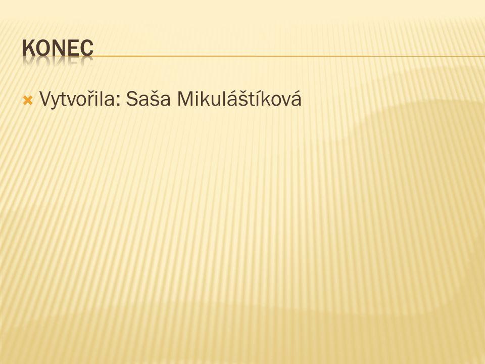 Vytvořila: Saša Mikuláštíková