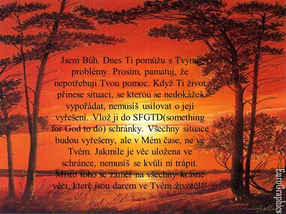 Jsem Bůh. Dnes Ti pomůžu s Tvými problémy. Prosím, pamatuj, že nepotřebuji Tvou pomoc. Když Ti život přinese situaci, se kterou se nedokážeš vypořádat