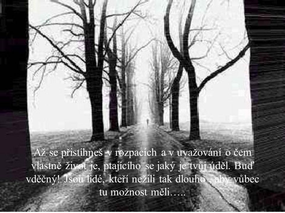 Kdybys zjistil, že jsi obětí lidské zloby, ignorance, malichernosti nebo nestálostí, Pamatuj, může to být horší.