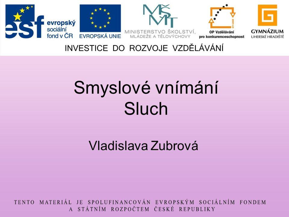 Smyslové vnímání Sluch Vladislava Zubrová