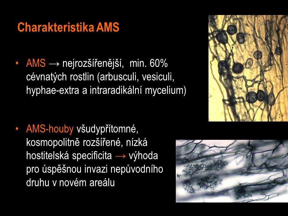 Charakteristika AMS AMS → nejrozšířenější, min.