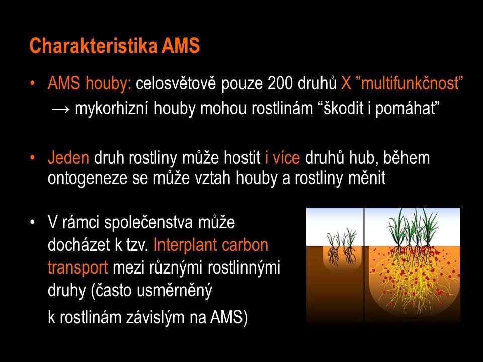Charakteristika AMS AMS houby: celosvětově pouze 200 druhů X multifunkčnost → mykorhizní houby mohou rostlinám škodit i pomáhat Jeden druh rostliny může hostit i více druhů hub, během ontogeneze se může vztah houby a rostliny měnit V rámci společenstva může docházet k tzv.