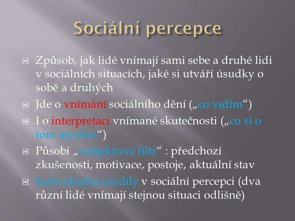 """ Způsob, jak lidé vnímají sami sebe a druhé lidi v sociálních situacích, jaké si utváří úsudky o sobě a druhých  Jde o vnímání sociálního dění (""""co"""