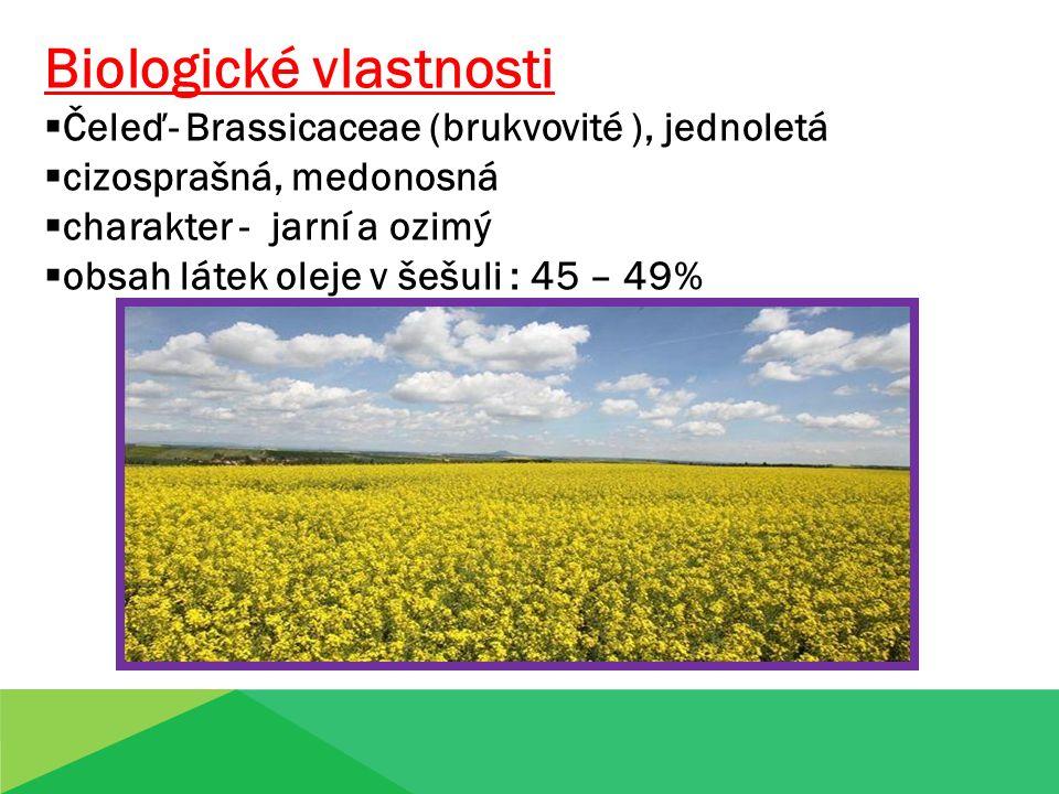 Biologické vlastnosti  Čeleď- Brassicaceae (brukvovité ), jednoletá  cizosprašná, medonosná  charakter - jarní a ozimý  obsah látek oleje v šešuli : 45 – 49%