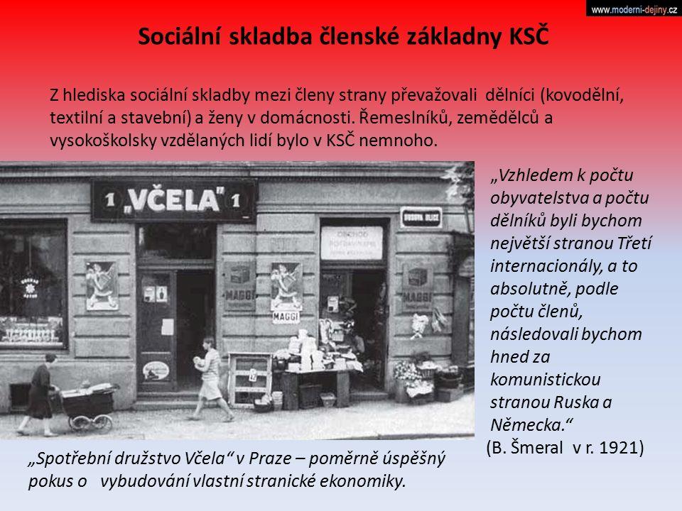 Z hlediska sociální skladby mezi členy strany převažovali dělníci (kovodělní, textilní a stavební) a ženy v domácnosti. Řemeslníků, zemědělců a vysoko