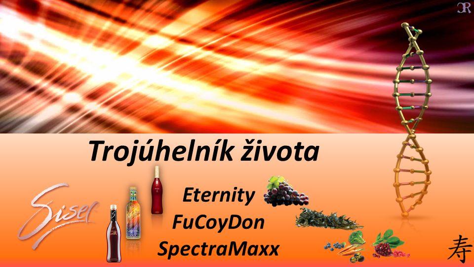 Trojúhelník života Eternity FuCoyDon SpectraMaxx