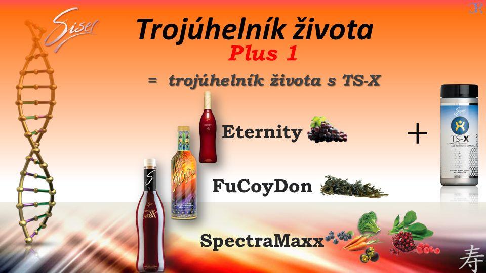 Plus 1 = trojúhelník života s TS-X Eternity FuCoyDon SpectraMaxx Trojúhelník života