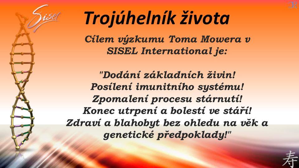 Cílem výzkumu Toma Mowera v SISEL International je: