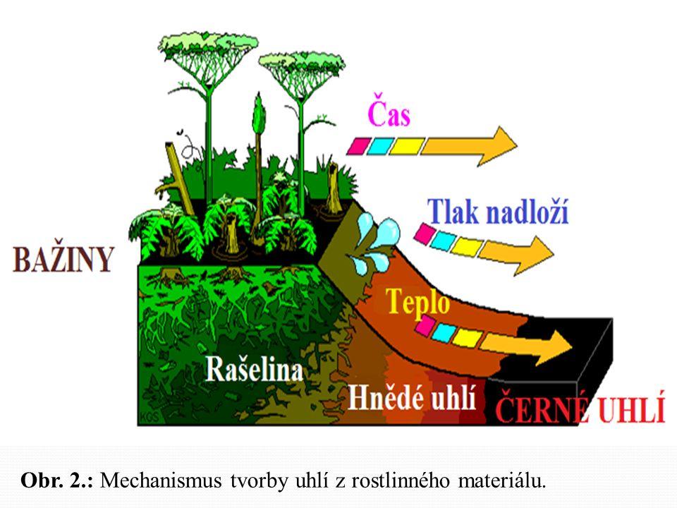 Obr. 2.: Mechanismus tvorby uhlí z rostlinného materiálu.