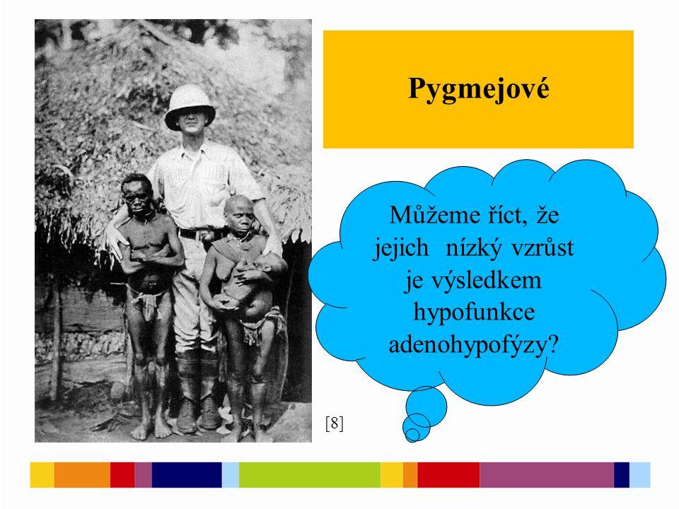 [8] Pygmejové Můžeme říct, že jejich nízký vzrůst je výsledkem hypofunkce adenohypofýzy?