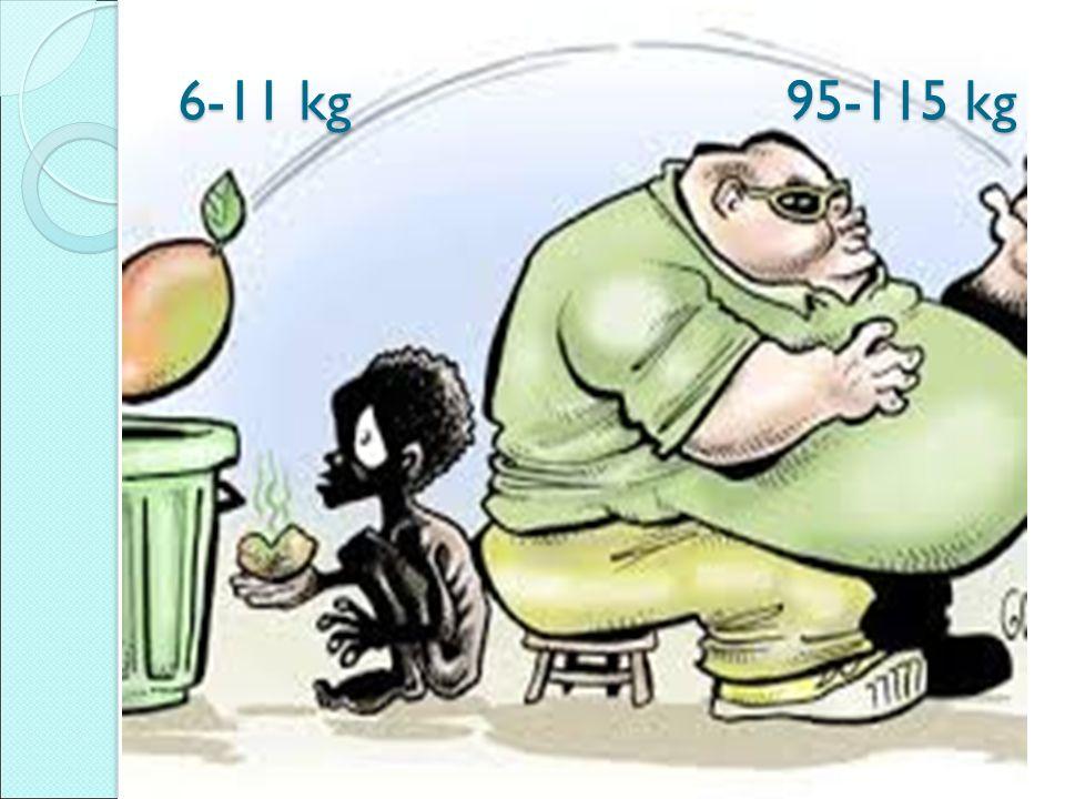 6-11 kg 95-115 kg