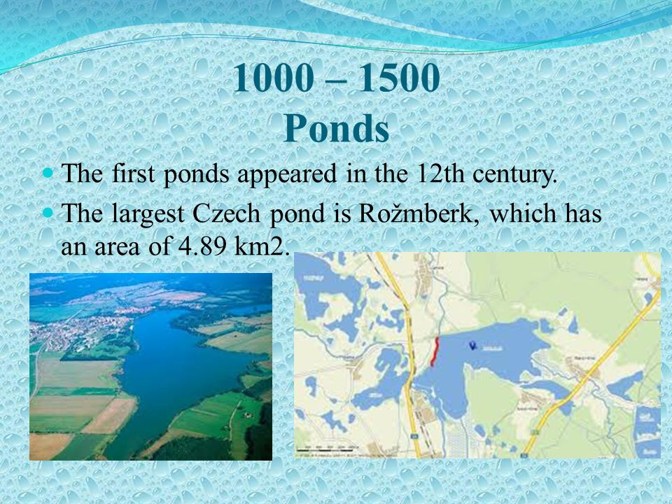 1000 – 1500 Ponds The first ponds appeared in the 12th century.