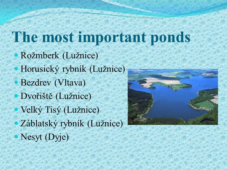 The most important ponds Rožmberk (Lužnice) Horusický rybník (Lužnice) Bezdrev (Vltava) Dvořiště (Lužnice) Velký Tisý (Lužnice) Záblatský rybník (Lužnice) Nesyt (Dyje)