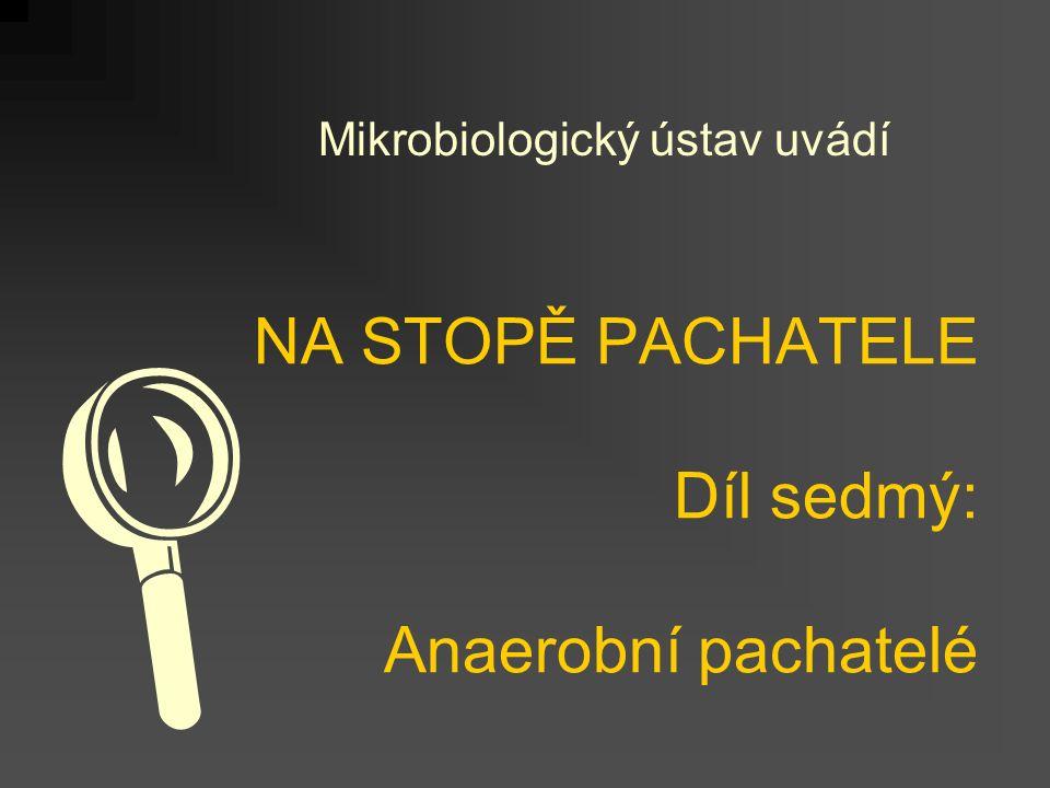 NA STOPĚ PACHATELE Díl sedmý: Anaerobní pachatelé Mikrobiologický ústav uvádí 