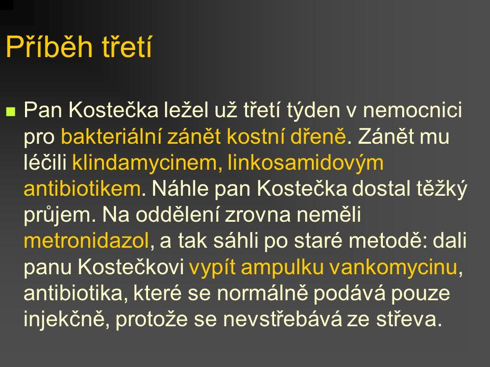 Příběh třetí Pan Kostečka ležel už třetí týden v nemocnici pro bakteriální zánět kostní dřeně. Zánět mu léčili klindamycinem, linkosamidovým antibioti