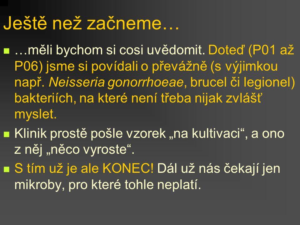Toxiny Clostridium difficile www.zuova.cz