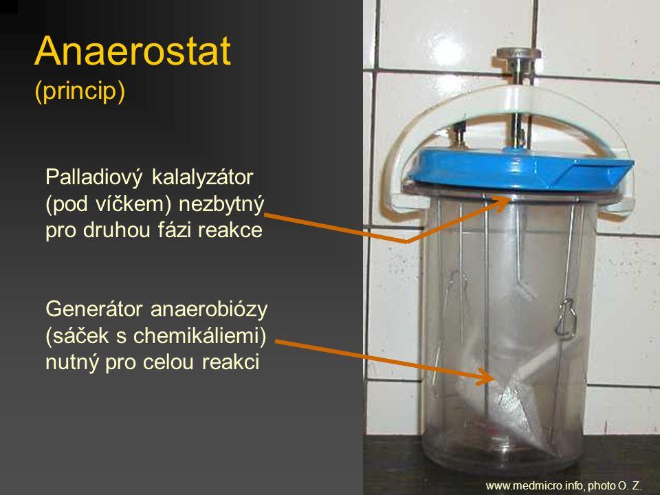 Anaerostat (princip) Palladiový kalalyzátor (pod víčkem) nezbytný pro druhou fázi reakce Generátor anaerobiózy (sáček s chemikáliemi) nutný pro celou